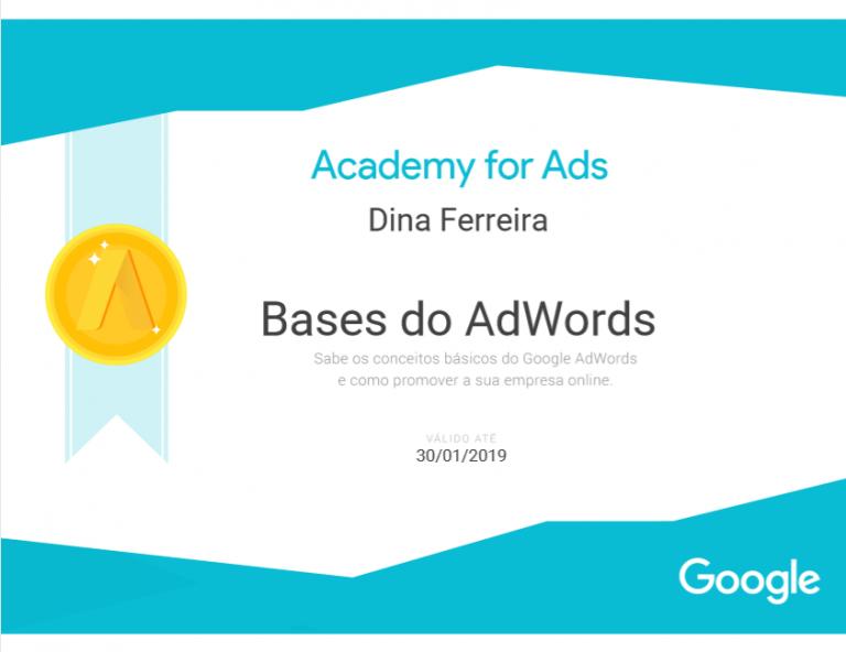 portfolio 18/47  - Certificado Google AdWords