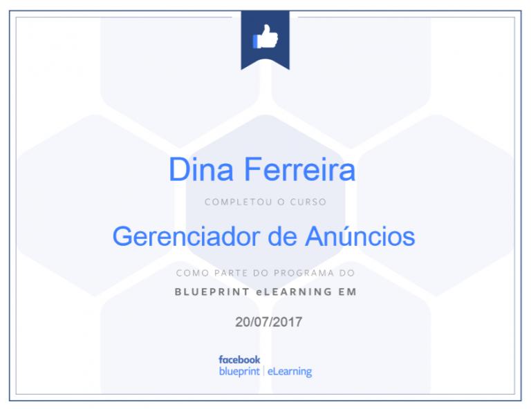 portfolio 2/47  - Certificado