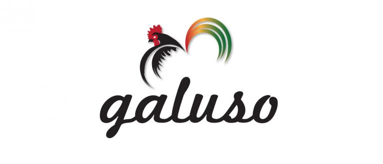 portfolio 12/14  - Design do Logo para a empresa portuguesa Galuso