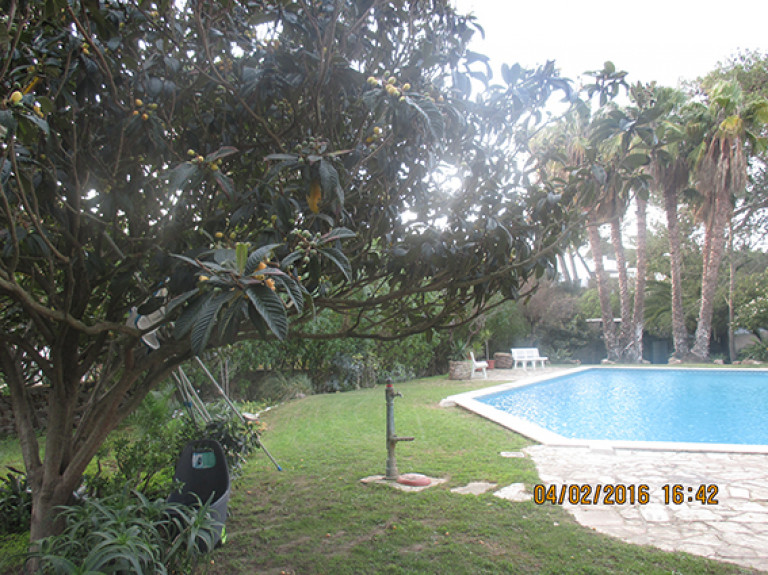 portfolio 4/13  - Jardim com piscina