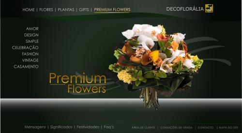 portfolio 10/10  - Website - Flores Premium