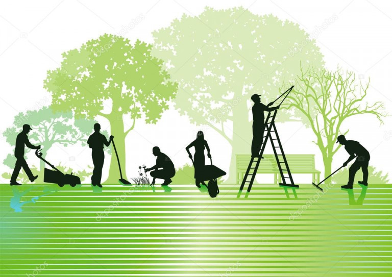 portfolio 5/9  - jardinagem