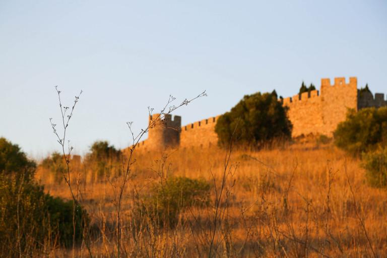 portfolio 2/11  - golden hour at the castel