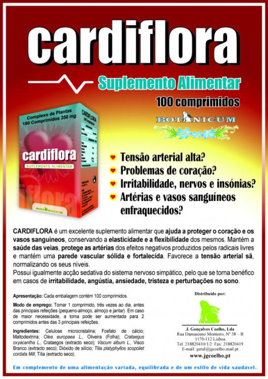 portfolio 18/24  - Design Cartazes