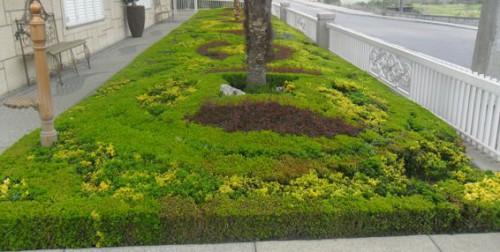 portfolio 7/10  - Construção de Jardins..