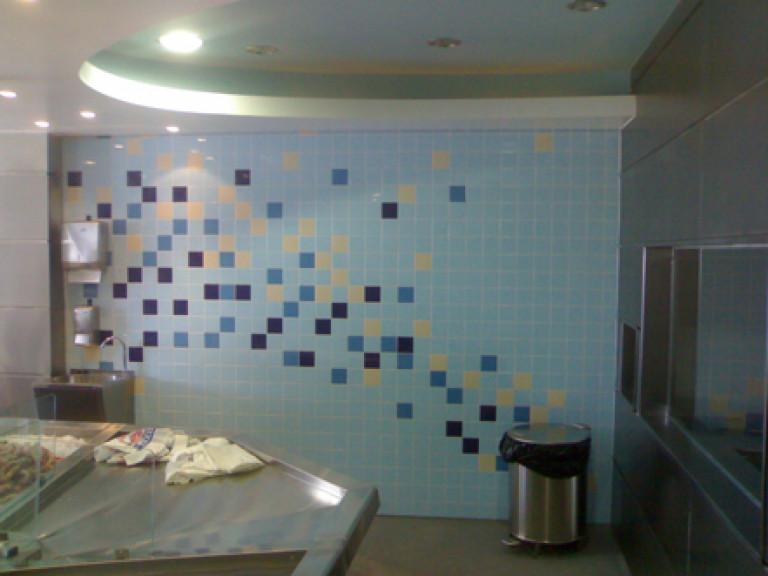 portfolio 35/65  - Pladur, azuleijos, mosaico etc.- loja de peixe
