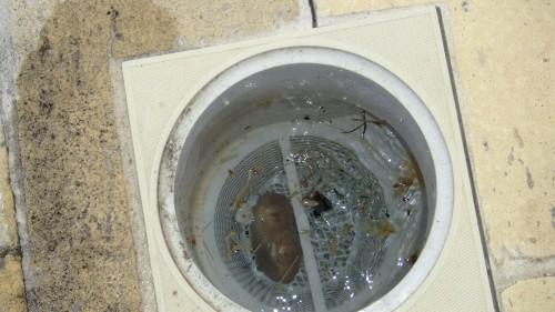 portfolio 11/15  - este sickmer  estava estalado,fazia com que a piscina se esvazia- se,o qual muita agua tava sendo desperdiçada.