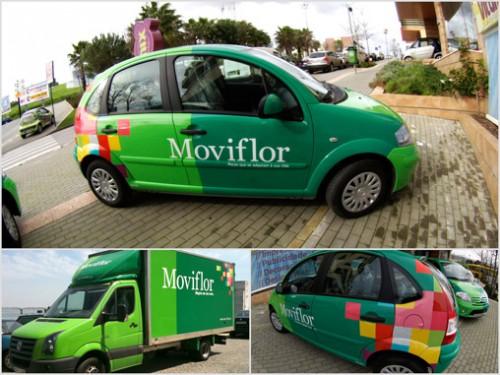 portfolio 5/13  - Frota Moviflor