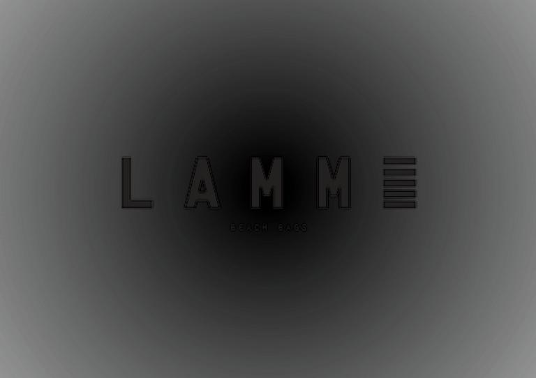 portfolio 3/9  - identidade Lamme