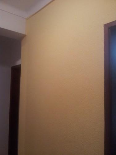 portfolio 144/236  - pintura de paredes