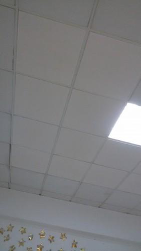 portfolio 97/236  - reparação de tectos