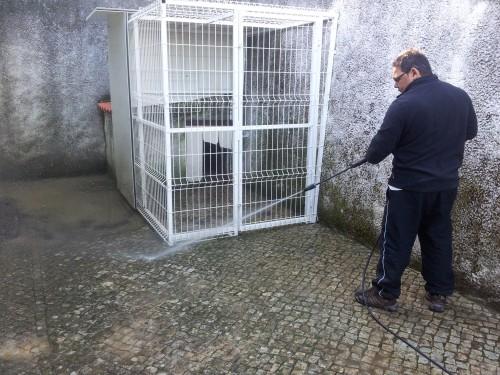portfolio 201/236  - lavagem de canis