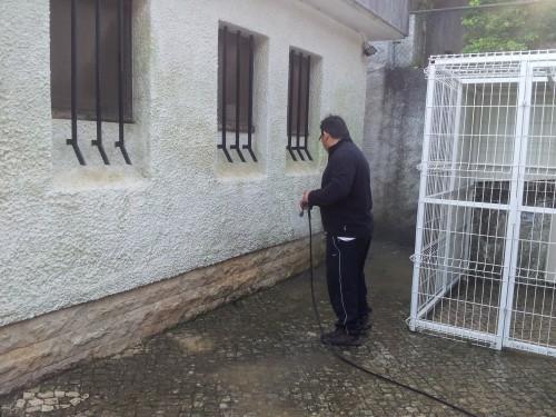 portfolio 198/236  - lavagem de quintais