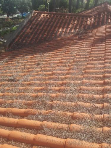 portfolio 190/236  - limpeza de telhados