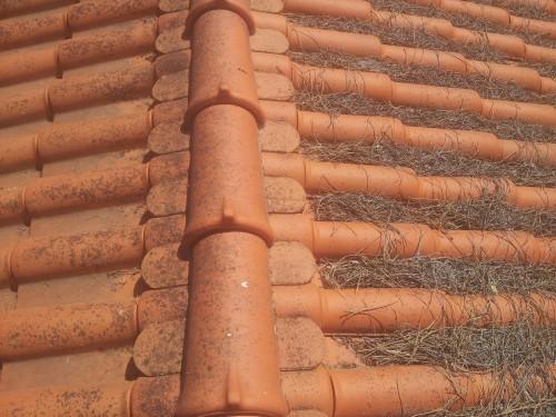 portfolio 185/236  - limpeza de telhados