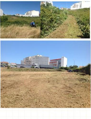 portfolio 4/13  - Desmatação de terreno com trator com corta mato