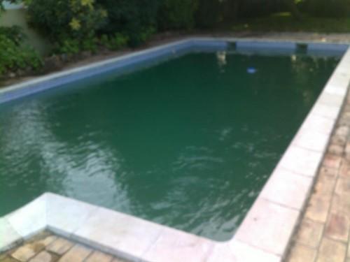 portfolio 5/38  - Recuperação de piscinas verdes sem estragar agua!!! #1 Dia