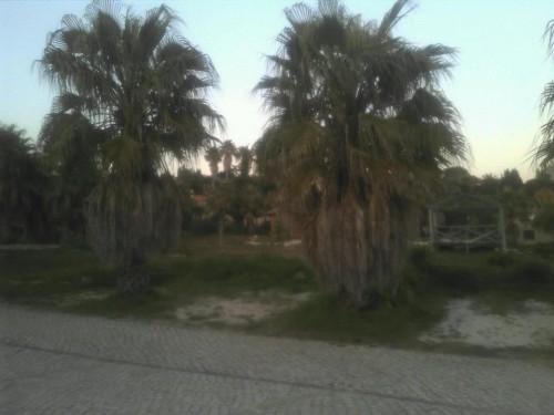 portfolio 32/38  - Quinta do Mar da Luz #4 Antes