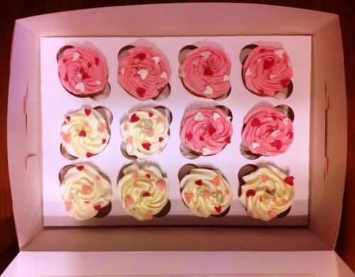 portfolio 10/24  - Cupcakes