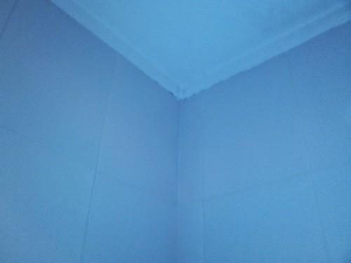 portfolio 346/449  - Reparação tecto WC