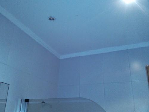 portfolio 343/449  - Reparação tecto WC
