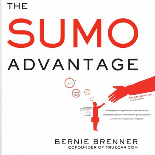 portfolio 16/24  - http://vizualwizard.com/portfolio-posts/bernie-brenner-the-sumo-advantage/