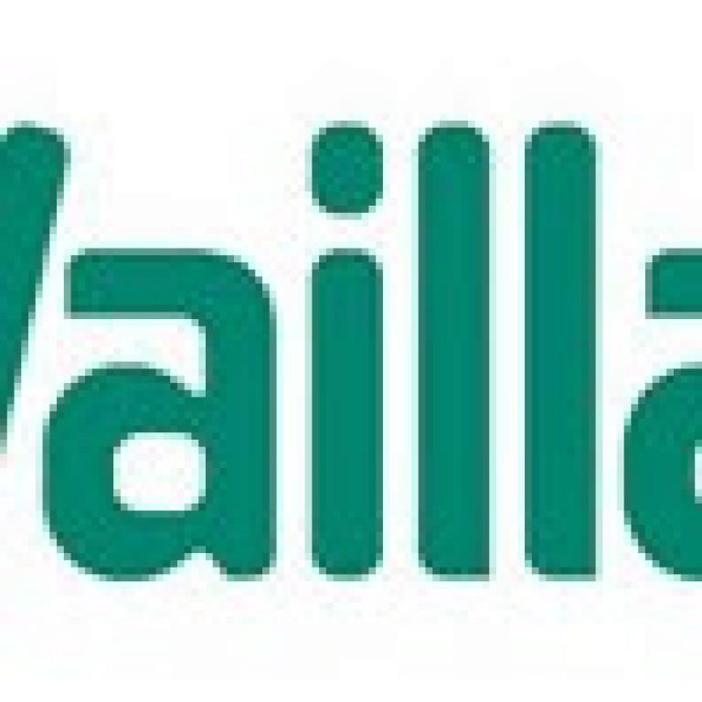 portfolio 3/14  - REPARAÇÃO DE ESQUENTADORES VAILLANT