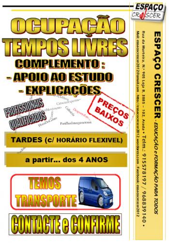 portfolio 1/14  - Ocupação de Tempos Livres
