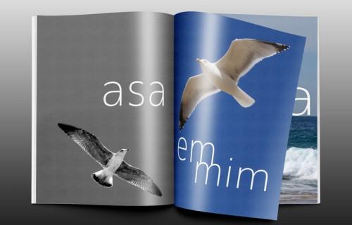 portfolio 6/15  - Edição digital, crónica fotográfica da autora GMoura, co-produção D'Almeida (texto) > Paginação e arte final