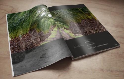portfolio 13/15  - Edição digital, crónica fotográfica da autora GMoura, co-edição > Diagramação, grafismo e arte final