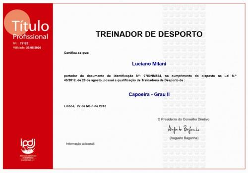 portfolio 4/5  - Cédula de Treinador Desportivo Nível II de Capoeira