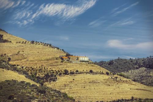 """portfolio 16/16  - """"Paisagens do Douro"""" - Photo Trip"""