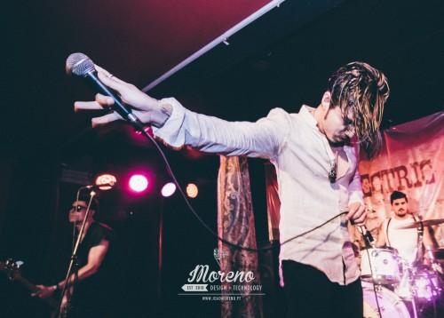 portfolio 15/16  - The Electric Reeds - Concert Photography